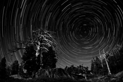 2013-05 Desolation Wilderness, Day 3  I scouted out this spot before dark because I liked the creepy looking tree. This is an overlay of 161 separate 30 second exposures.  I set up the camera about 2 AM and let it take pictures until the battery died an hour and a half later.  There was a full moon that night, so the trees are well lit.  The color version seemed too bright, so I went with black and white instead.